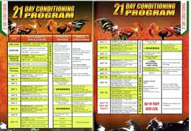 21 Day Conditioning Program Excellence Poultry Livestock