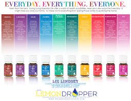 essential oils are the life blood of the plant world they have a similar biochemistry to human blood oxygen nitrogen carbon etc