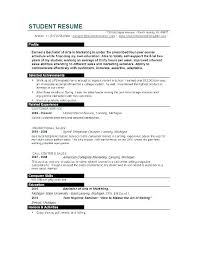 resume college student sample resume template college student job resume template college student