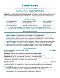 Tips For Resume Format Functional Resume Format For Marketing Manager Sales Example