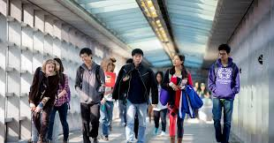 de blasio s plan for nyc s isn t anti asian it s anti de blasio s plan for nyc s isn t anti asian it s anti