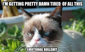 I'm getting pretty damn tired of all this emotional bullshit ... via Relatably.com