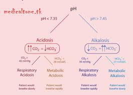 Respiratory Metabolic Acidosis Alkalosis Chart Pin By Heather On Rt Acidosis Alkalosis Metabolic