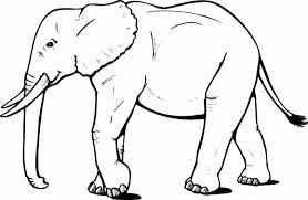 Elephant Coloring Pages Printable Printable Coloring Pages