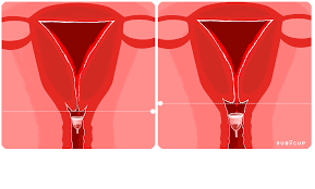 Image result for menstrual cup