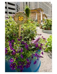Organic Kitchen Gardening Asla 2012 Professional Awards Lafayette Greens Urban