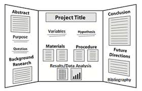 Science Boards Layout Magdalene Project Org