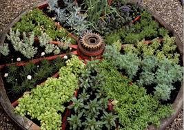 Small Picture Famous Wagon Wheel Herb Garden Design Appealing Garden Ideas