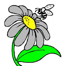 """Résultat de recherche d'images pour """"dessin marguerite fleur"""""""