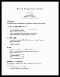 Career Summary Example  cover letter job resume objective       professional summary examples