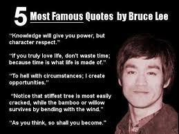 Bruce Lee Quotes Beauteous Bruce Lee Quotes