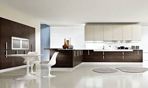 Stylish Kitchen Kitchen How To Choose Stylish Kitchen Cabinet Stylish Kitchen