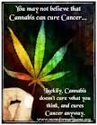 cancer marihuana medicinal