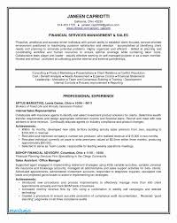 Entry Level Resume Examples For College Students Tips For Resume