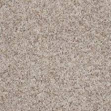 null trendy threads ii color lakeview texture 12 ft carpet