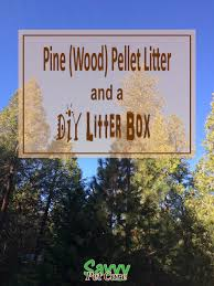 biodegradable litter is a healthier choice for your cat pine pellet litter requires some special