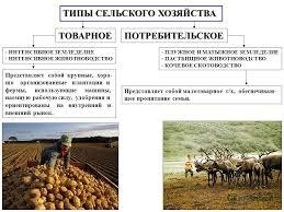 Презентация на тему География сельского хозяйства мира  5 ТИПЫ СЕЛЬСКОГО ХОЗЯЙСТВА ТОВАРНОЕПОТРЕБИТЕЛЬСКОЕ