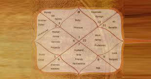 Astrolife Vedic Birth Chart Best Astro Services In Mumbai India Rudra Jyotish