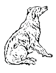 Cats And Dogs Coloring Pages Good Dog Coloring Pictures To Print