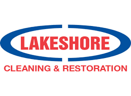 lakes cleaning restoration