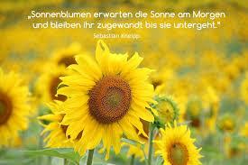 Sonnenblumen Einfachtilda