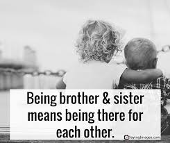 Brother Quotes Stunning Brother And Sister Quotes Aiyoume
