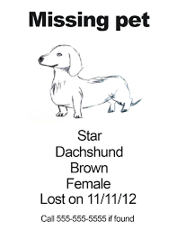 Lost Pet Poster Template Fancy Lost Template Collection Documentation Template Example 19