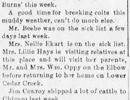 Lillie Hays - Newspapers.com