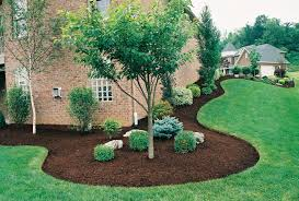... Stunning Dark Green Oval Antique Grass Landscape Design Ideas Decoative Trees  Ideas: Cozy ...