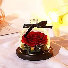 GHGENGI Rose Flower Flower Glass Cover <b>Eternal Flower</b> Gift <b>Box</b> ...