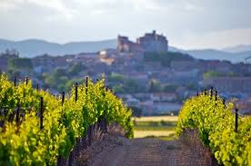 Image result for argentina wine