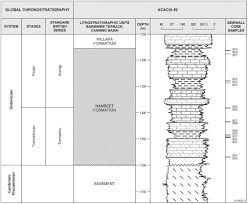 7 Downie St Size Chart An Early Ordovician Organic Walled Microphytoplankton