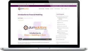 Online Training In Financial Modelling Plum Solutions