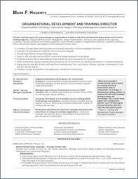 Resume Format Work Experience Amazing Work Experience Resume Sample Awesome Work Experience Resume Example