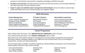 Project Management Consultant Resume Samples Objective Examples