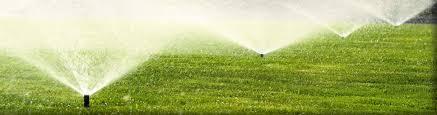 Image result for cost of lawn sprinkler system
