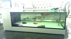 55 Gallon Fish Tank Dimensions Onsaturn Co