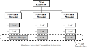 Procurement Department Organization Chart The 4 Types Of Project Organizational Structure