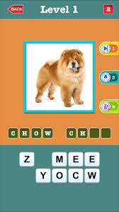 dog breeds quiz for guess most por small hound large dogs