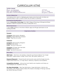 Objective For Resume Marketing Vipin Seo Resume Seo Resume Sample Format