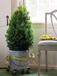 Crown Christmas Tree Topper  Gusto U0026 GraceChristmas Trees Small