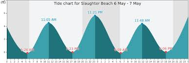 33 Unfolded Slaughter Beach Tides
