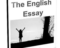 inter nd year english important essays topics