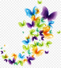 Flowers Clipart Background png download ...