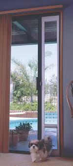 wonderful patio dog door patio sliding glass pet door img 0046 patio sliding glass pet door house design pictures