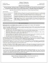 Executive Summary Dynamic Resumes Of Nj
