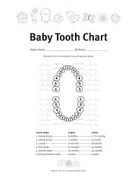 Teething Chart Babies Baby Teething Symptoms And Schedule Five Spot Green Living