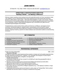 Resume Template Executive New A Professional Resume Template For An Operations And Management