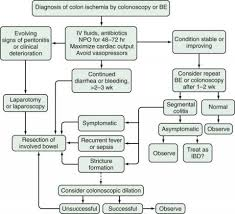Pathophysiology Of Diarrhoea In Flow Chart Ischemic Colitis Cancer Therapy Advisor