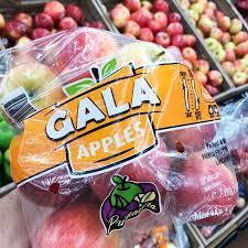 Easy Gardener 601 14u0027 X 14u0027 Bird X Protective Netting For Fruits Walmart Fruit Trees For Sale